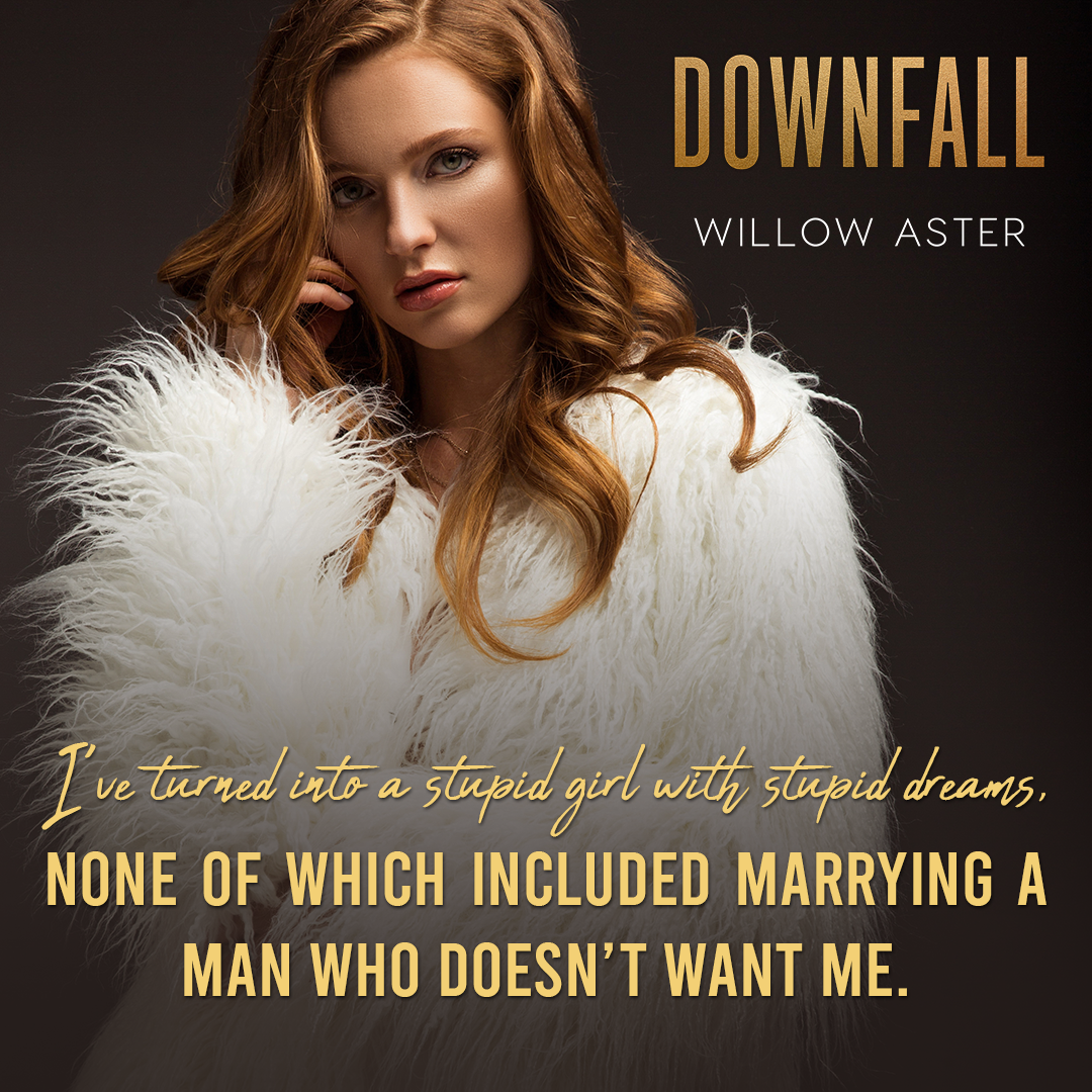 T2_Downfall_Willow Aster